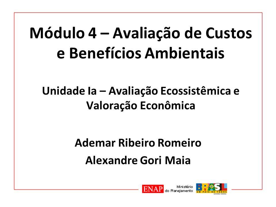 Ademar Ribeiro Romeiro Alexandre Gori Maia