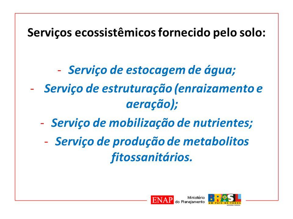Serviços ecossistêmicos fornecido pelo solo: