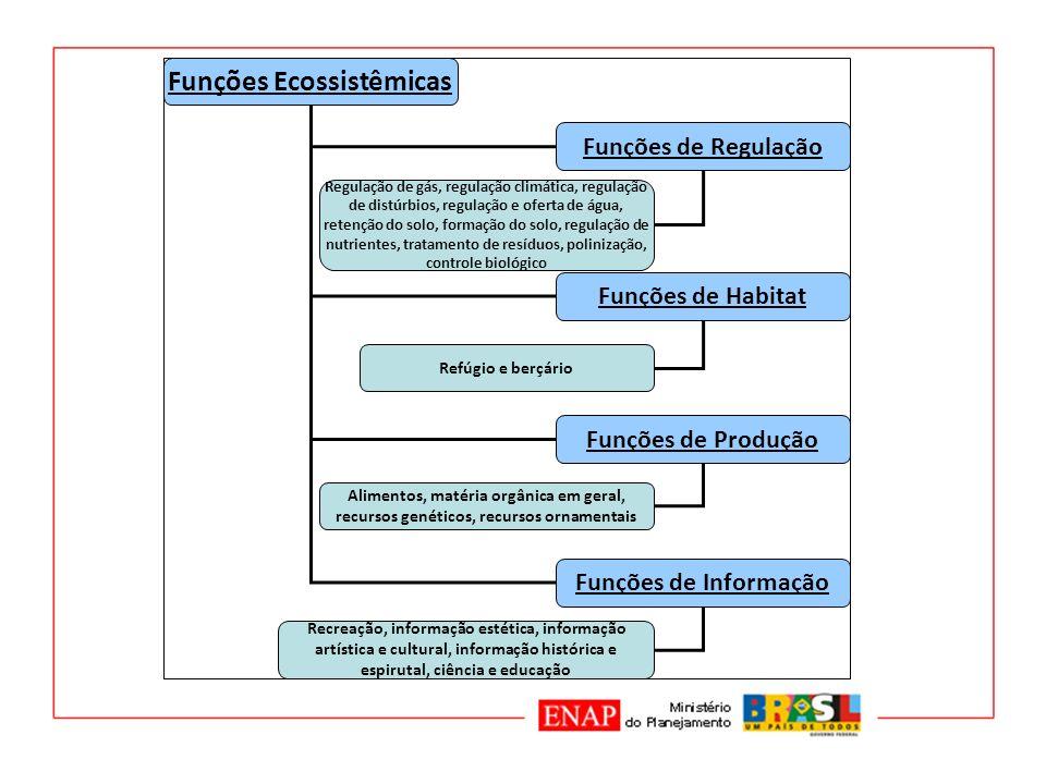 Funções Ecossistêmicas