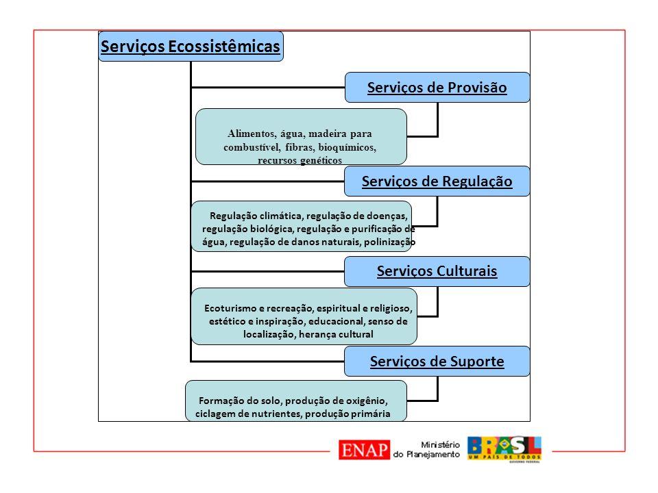 Serviços Ecossistêmicas
