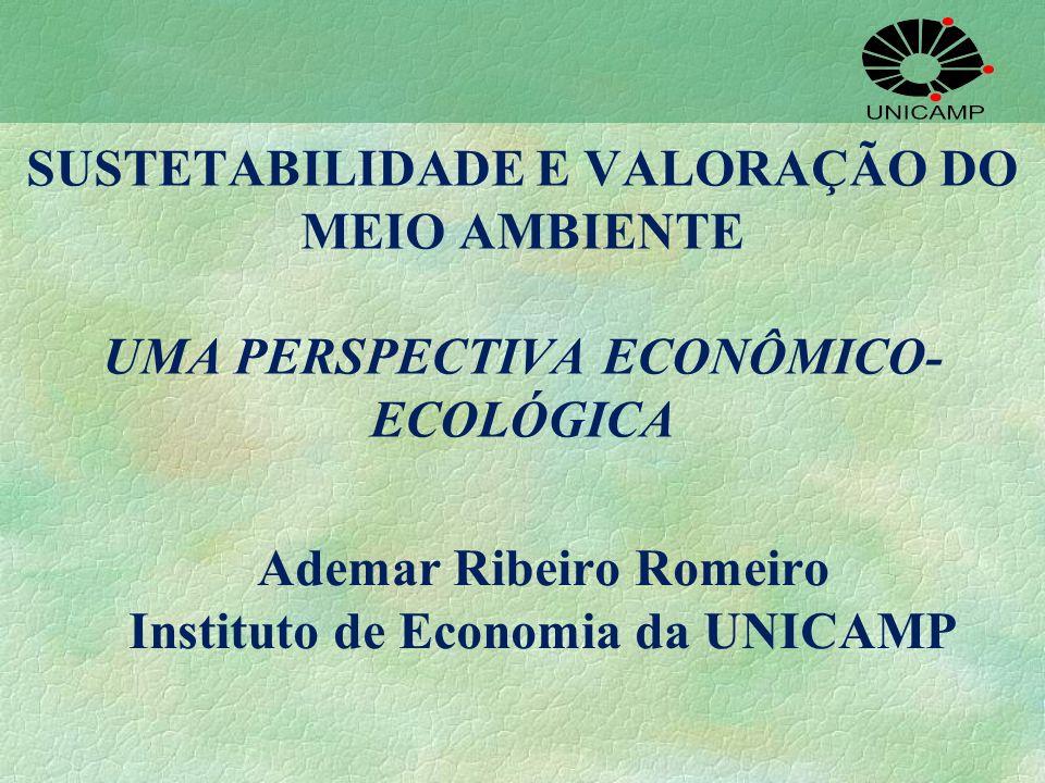 Ademar Ribeiro Romeiro Instituto de Economia da UNICAMP