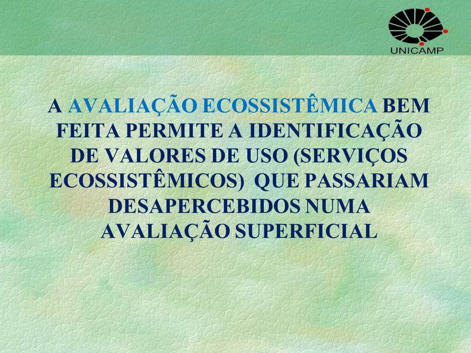 A AVALIAÇÃO ECOSSISTÊMICA BEM FEITA PERMITE A IDENTIFICAÇÃO DE VALORES DE USO (SERVIÇOS ECOSSISTÊMICOS) QUE PASSARIAM DESAPERCEBIDOS NUMA AVALIAÇÃO SUPERFICIAL