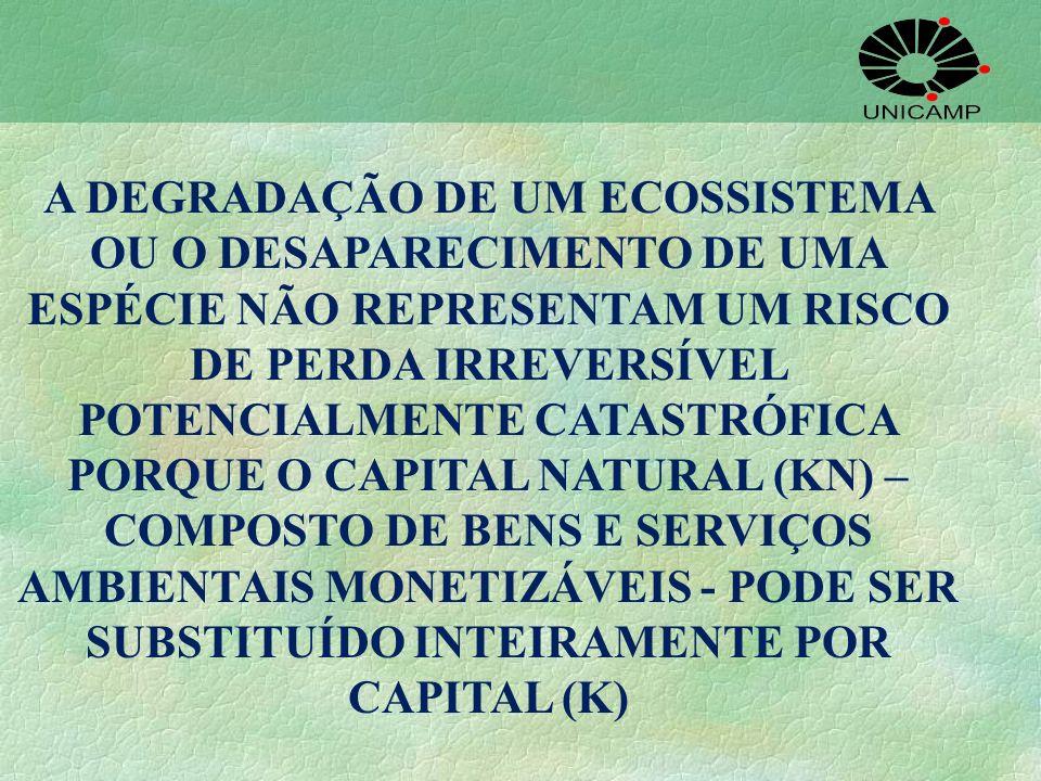 A DEGRADAÇÃO DE UM ECOSSISTEMA OU O DESAPARECIMENTO DE UMA ESPÉCIE NÃO REPRESENTAM UM RISCO DE PERDA IRREVERSÍVEL POTENCIALMENTE CATASTRÓFICA PORQUE O CAPITAL NATURAL (KN) – COMPOSTO DE BENS E SERVIÇOS AMBIENTAIS MONETIZÁVEIS - PODE SER SUBSTITUÍDO INTEIRAMENTE POR CAPITAL (K)