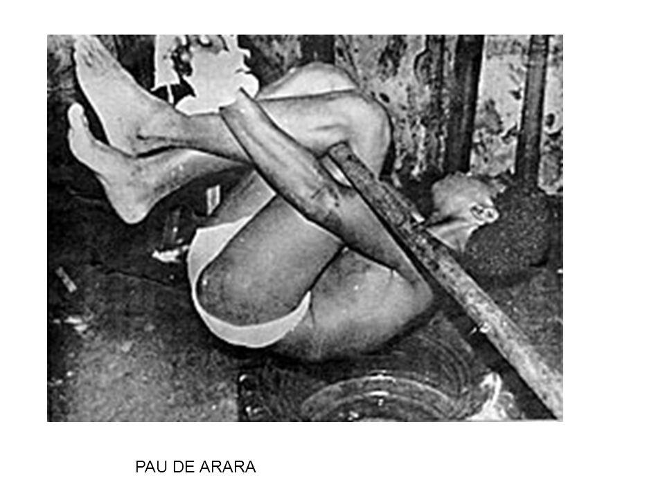 PAU DE ARARA
