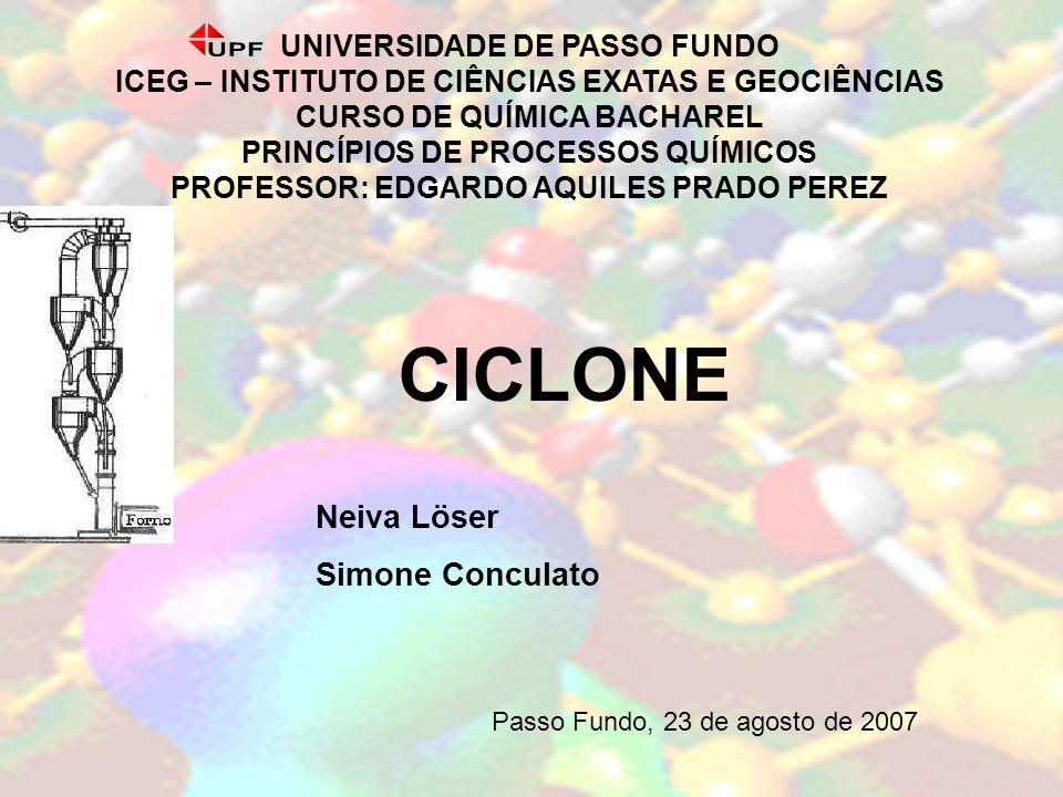 CICLONE Neiva Löser Simone Conculato UNIVERSIDADE DE PASSO FUNDO