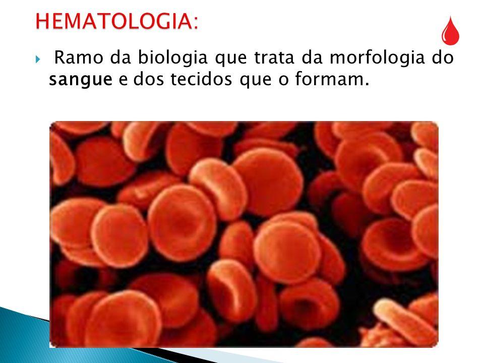 HEMATOLOGIA: Ramo da biologia que trata da morfologia do sangue e dos tecidos que o formam.