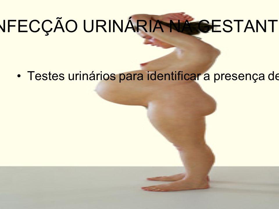 INFECÇÃO URINÁRIA NA GESTANTE