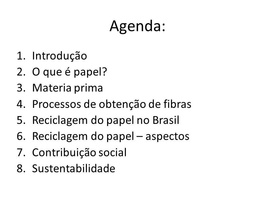 Agenda: Introdução O que é papel Materia prima