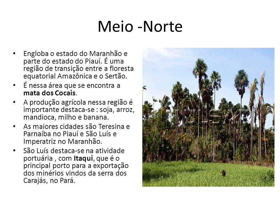 Meio -NorteEngloba o estado do Maranhão e parte do estado do Piauí. É uma região de transição entre a floresta equatorial Amazônica e o Sertão.
