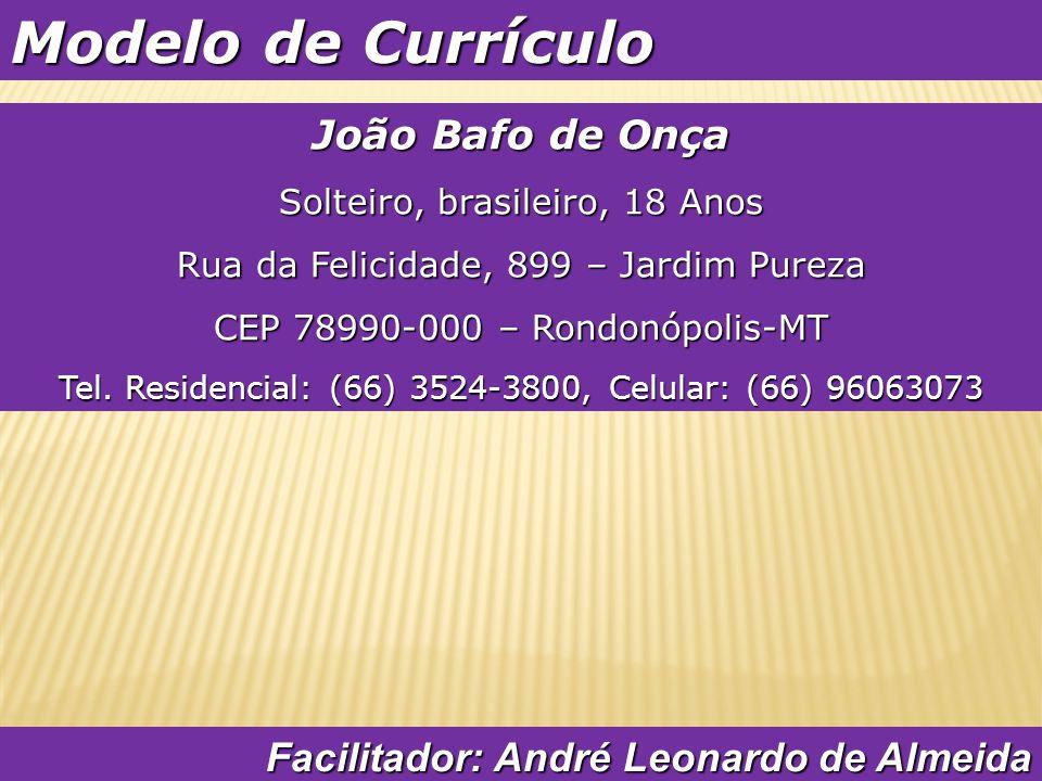 Modelo de Currículo João Bafo de Onça