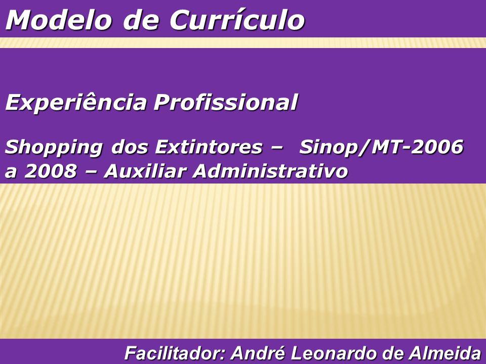 Modelo de Currículo Experiência Profissional
