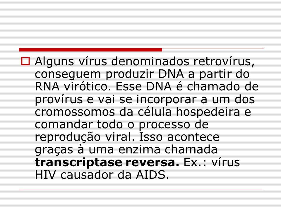 Alguns vírus denominados retrovírus, conseguem produzir DNA a partir do RNA virótico.