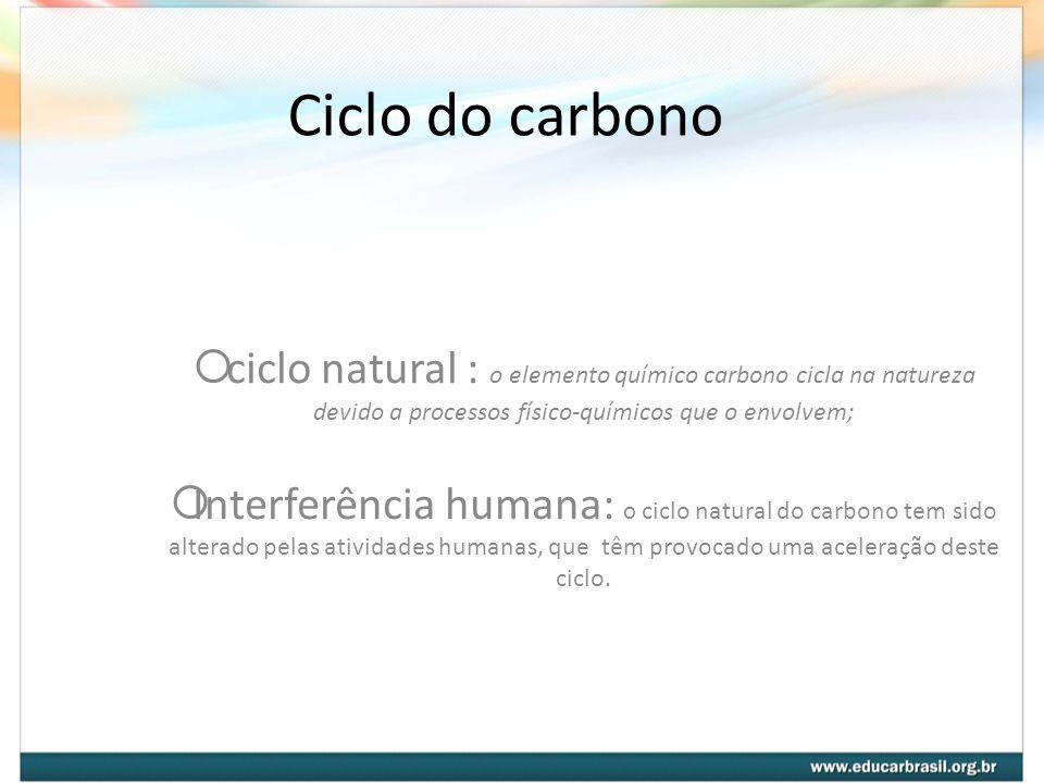 Ciclo do carbono ciclo natural : o elemento químico carbono cicla na natureza devido a processos físico-químicos que o envolvem;