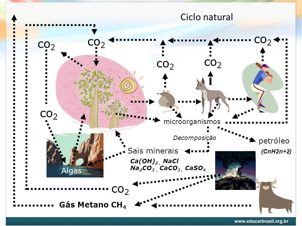 co2 co2 co2 co2 co2 co2 co2 Ciclo natural petróleo Sais minerais Algas