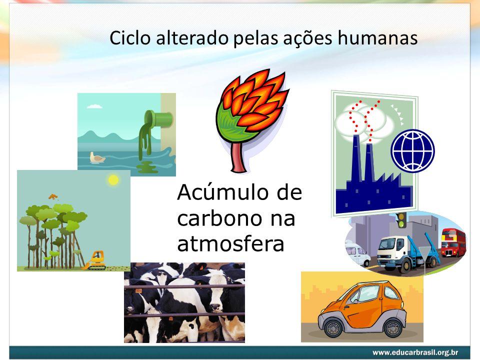 Ciclo alterado pelas ações humanas