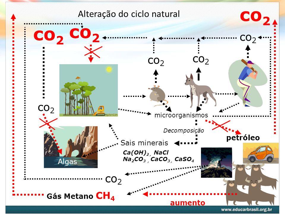 Alteração do ciclo natural