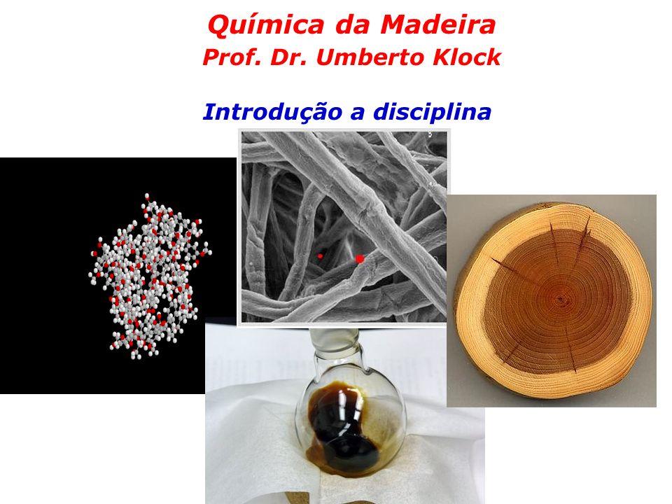 Química da Madeira Prof. Dr. Umberto Klock Introdução a disciplina