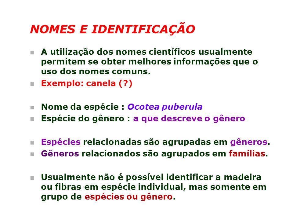 NOMES E IDENTIFICAÇÃO A utilização dos nomes científicos usualmente permitem se obter melhores informações que o uso dos nomes comuns.