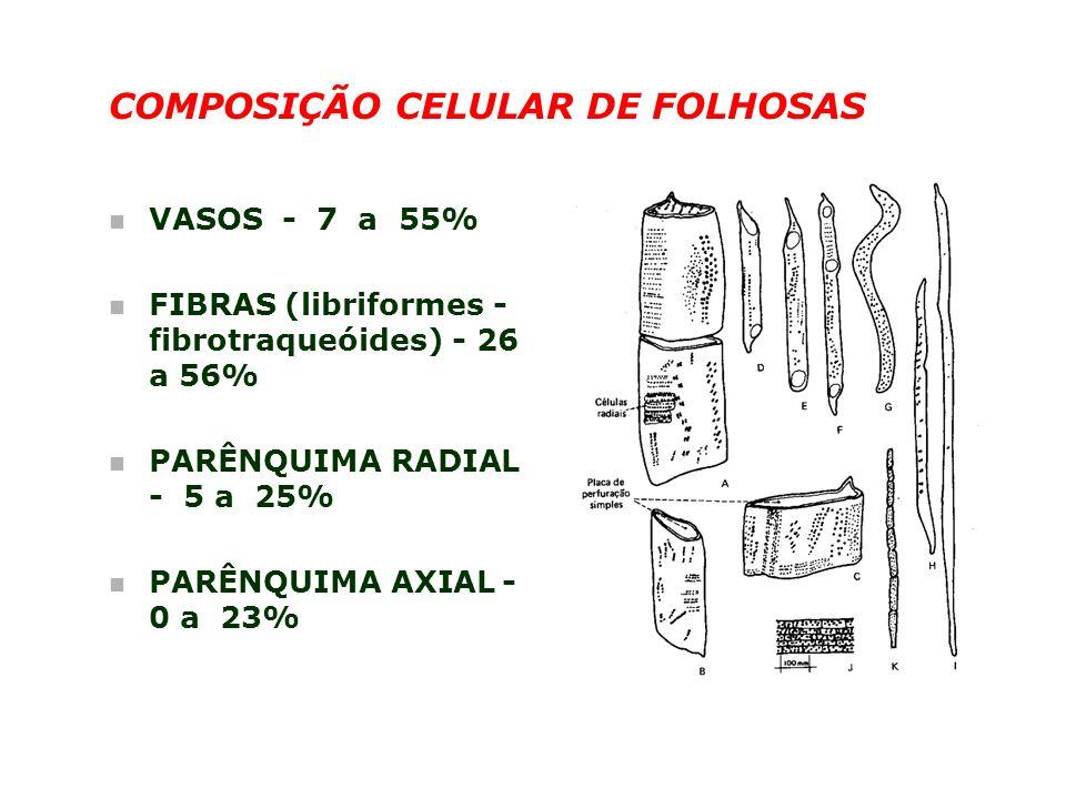 COMPOSIÇÃO CELULAR DE FOLHOSAS