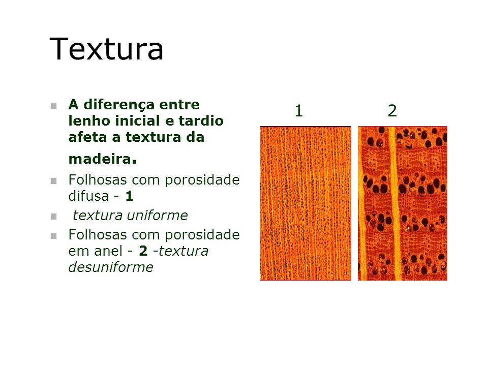 Textura A diferença entre lenho inicial e tardio afeta a textura da madeira. Folhosas com porosidade difusa - 1.