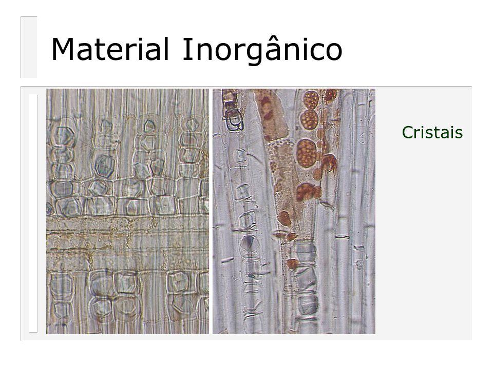 Material Inorgânico Cristais
