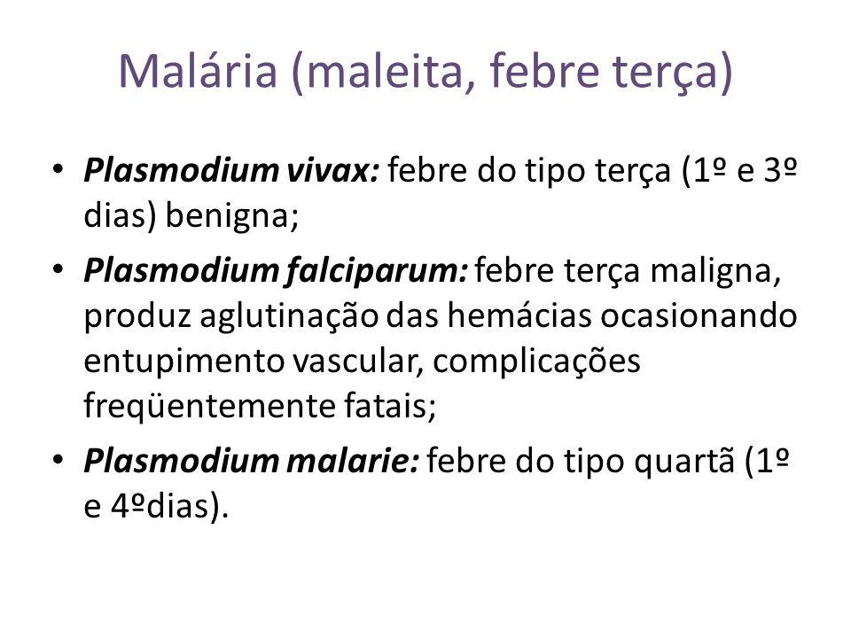 Malária (maleita, febre terça)