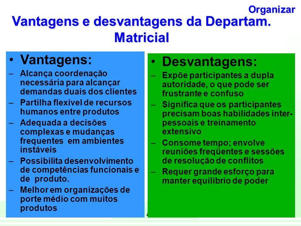 Vantagens e desvantagens da Departam. Matricial