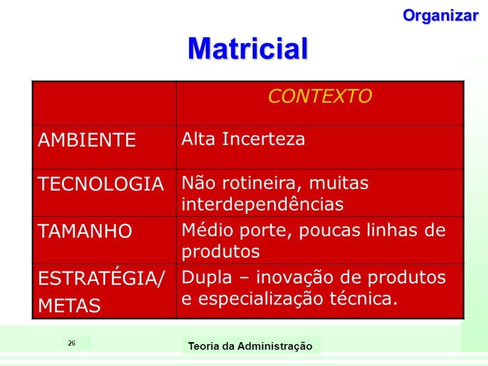Matricial CONTEXTO AMBIENTE TECNOLOGIA TAMANHO ESTRATÉGIA/ METAS