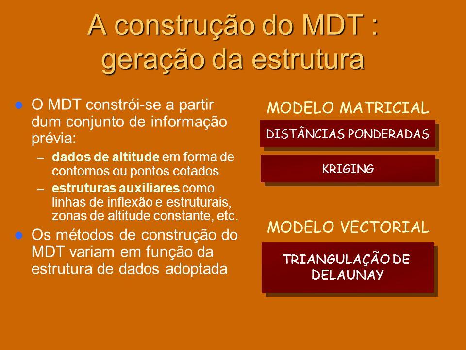 A construção do MDT : geração da estrutura