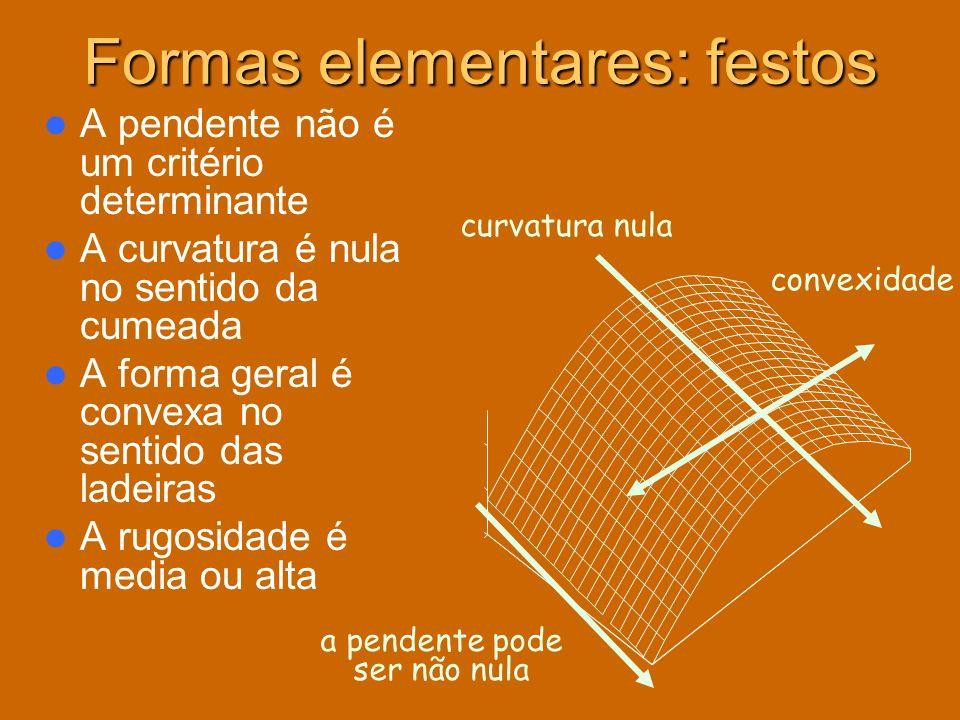 Formas elementares: festos