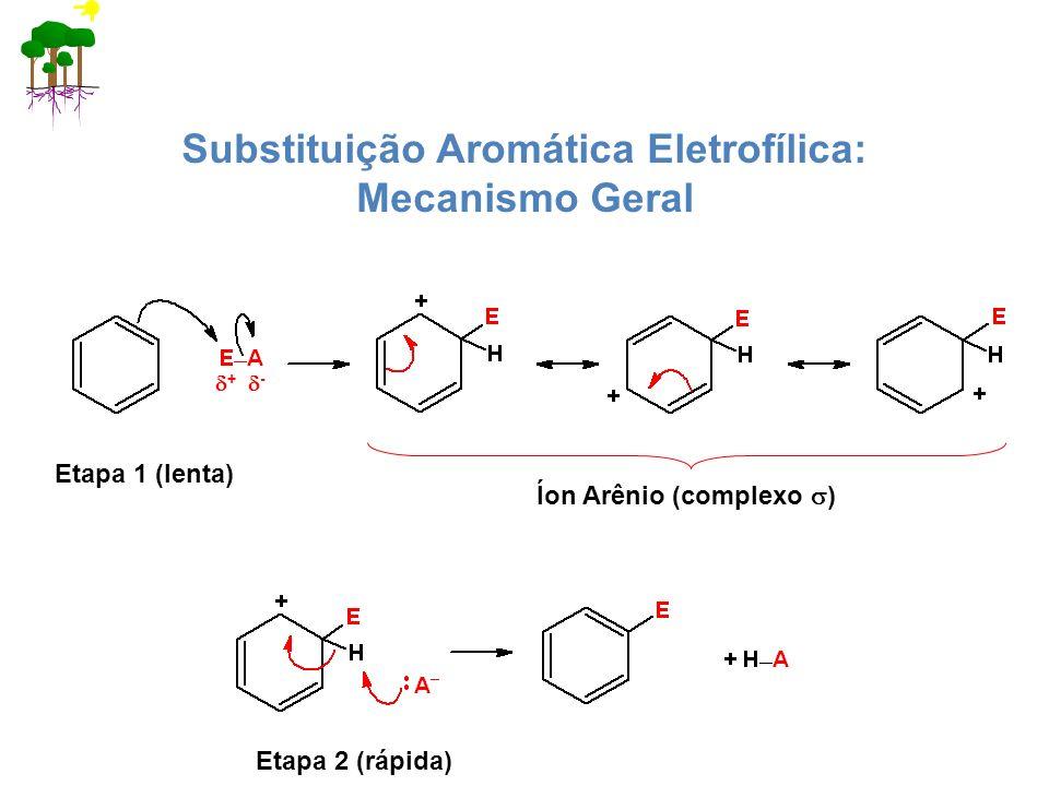 Substituição Aromática Eletrofílica: