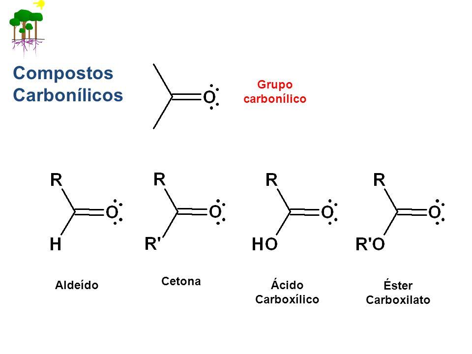 Compostos Carbonílicos
