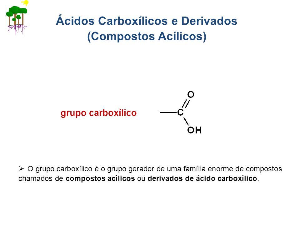 Ácidos Carboxílicos e Derivados (Compostos Acílicos)