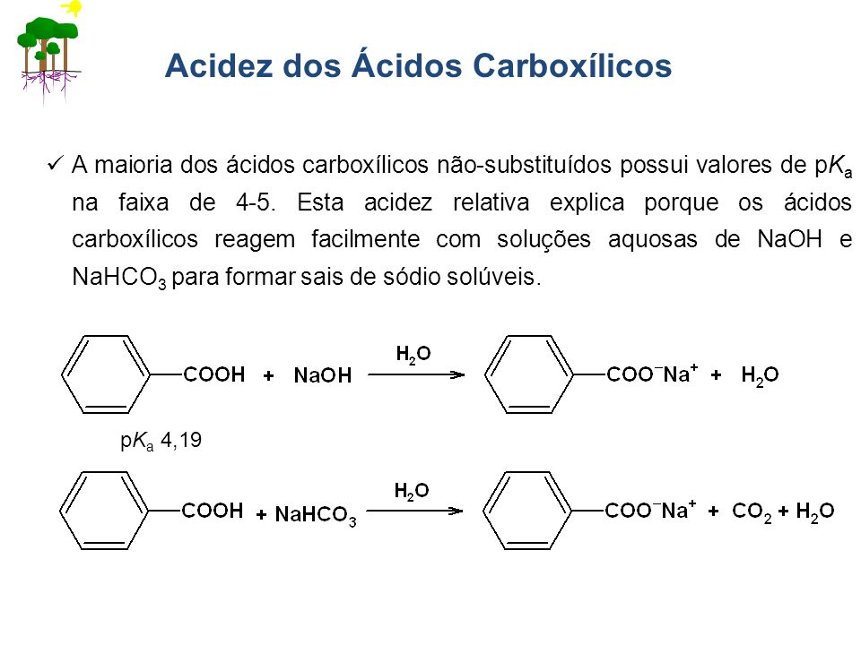 Acidez dos Ácidos Carboxílicos