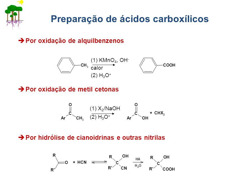 Preparação de ácidos carboxílicos