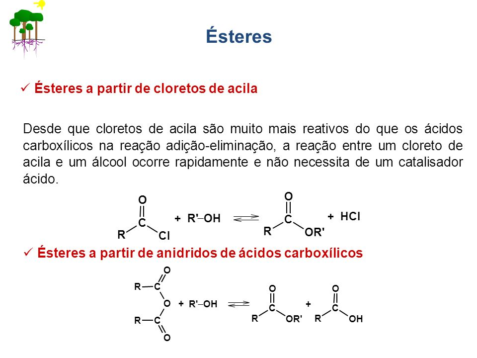 Ésteres Ésteres a partir de cloretos de acila