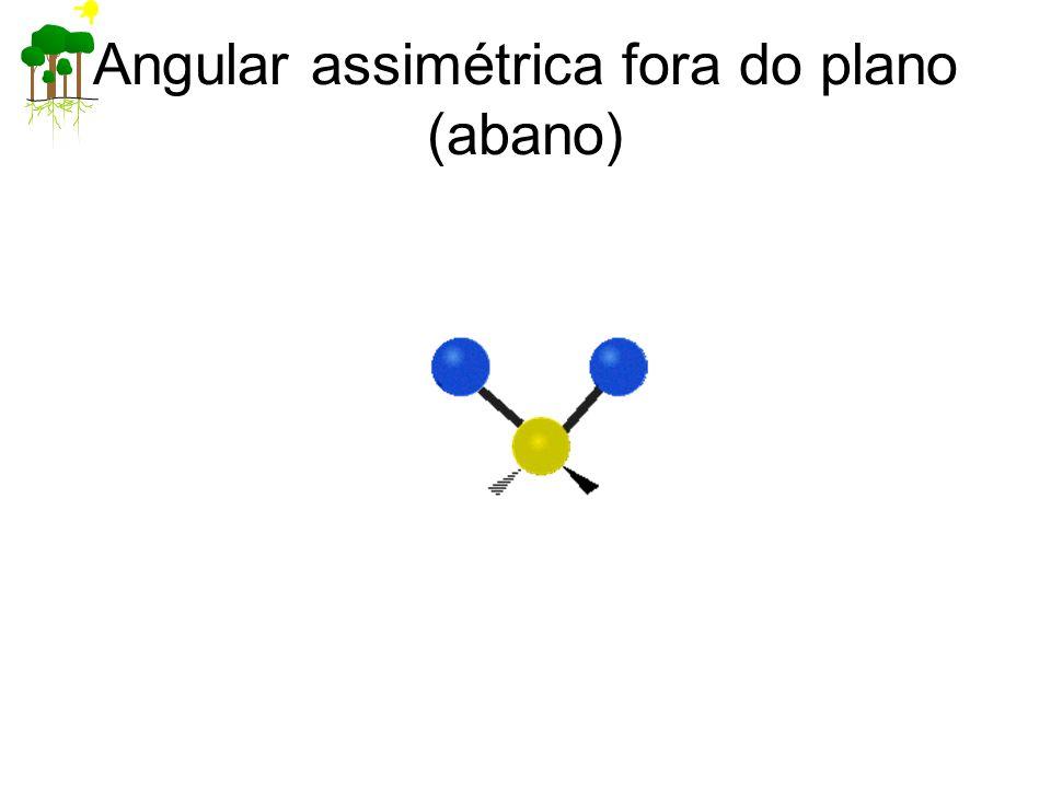 Angular assimétrica fora do plano (abano)
