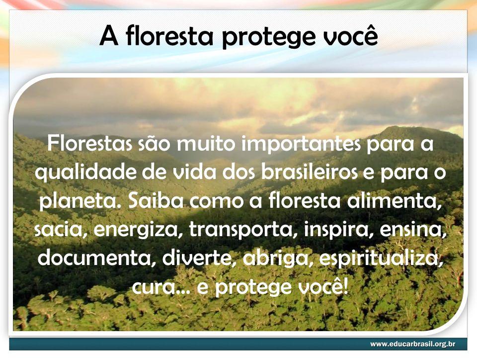 A floresta protege você