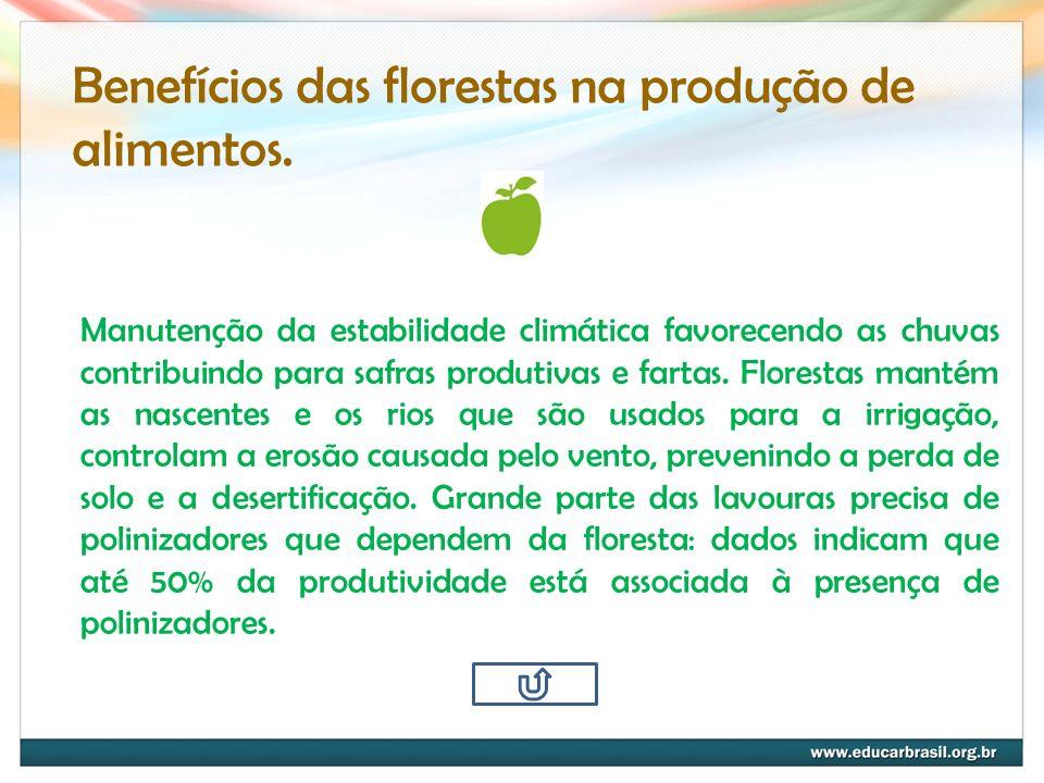 Benefícios das florestas na produção de alimentos.