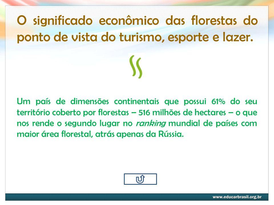 O significado econômico das florestas do ponto de vista do turismo, esporte e lazer.