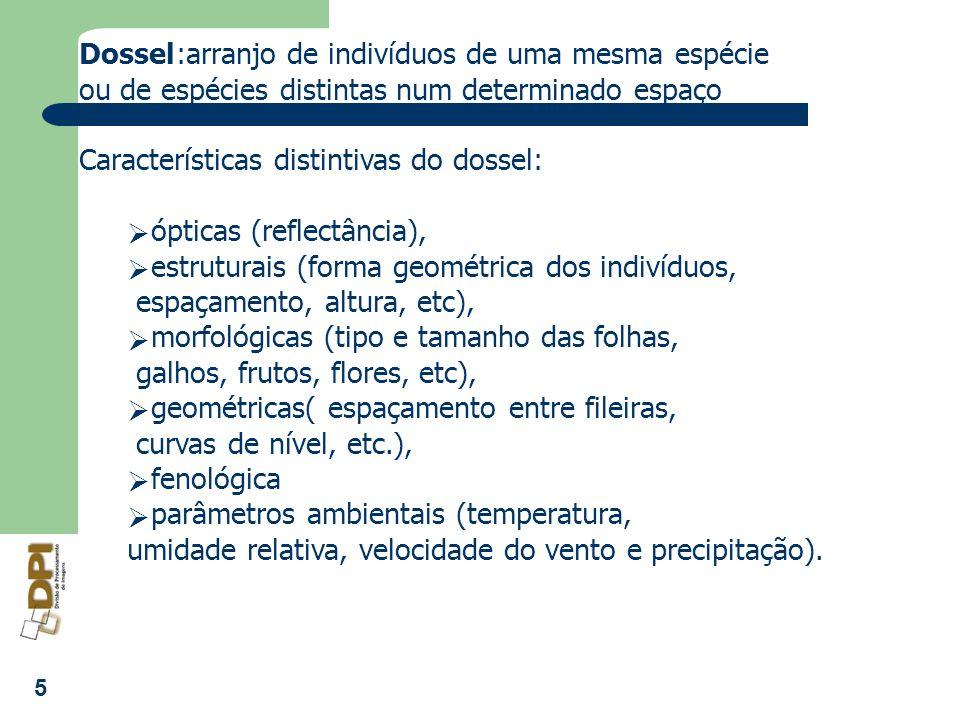Dossel :arranjo de indivíduos de uma mesma espécie. ou de espécies distintas num determinado espaço.