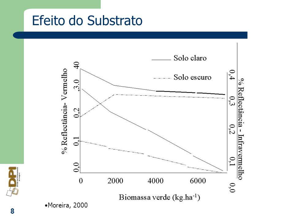 Efeito do Substrato Moreira, 2000