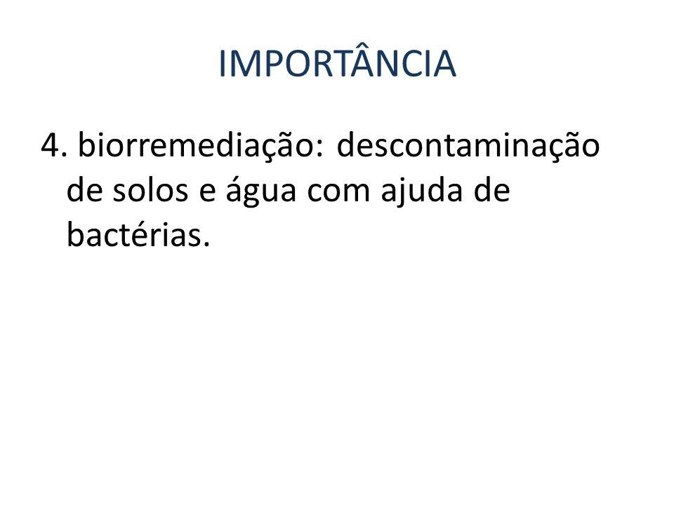 IMPORTÂNCIA 4. biorremediação: descontaminação de solos e água com ajuda de bactérias.