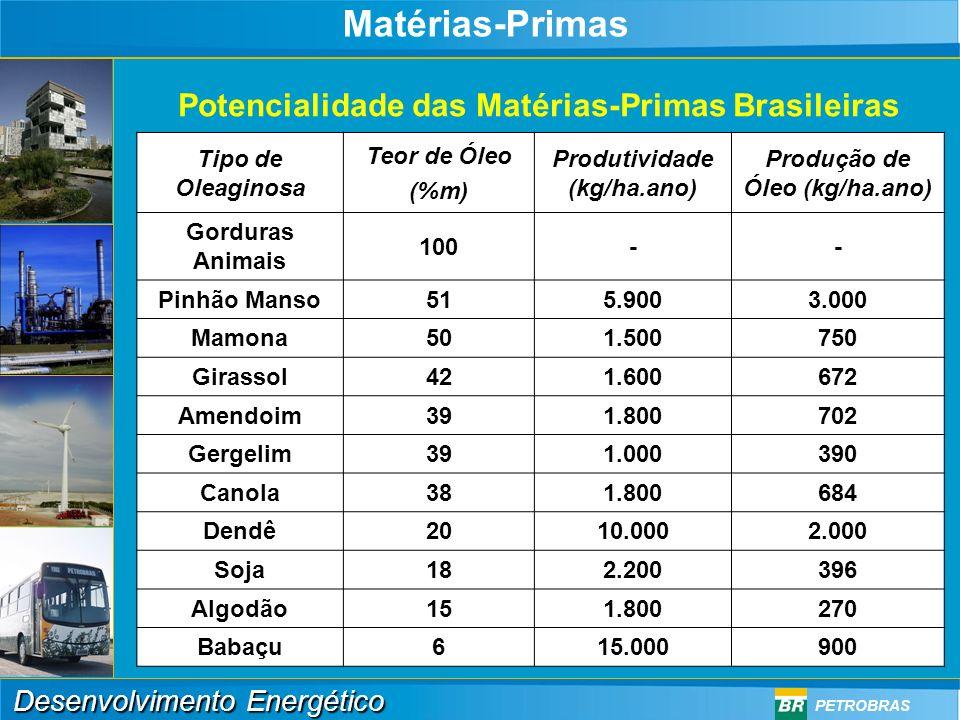Matérias-Primas Potencialidade das Matérias-Primas Brasileiras