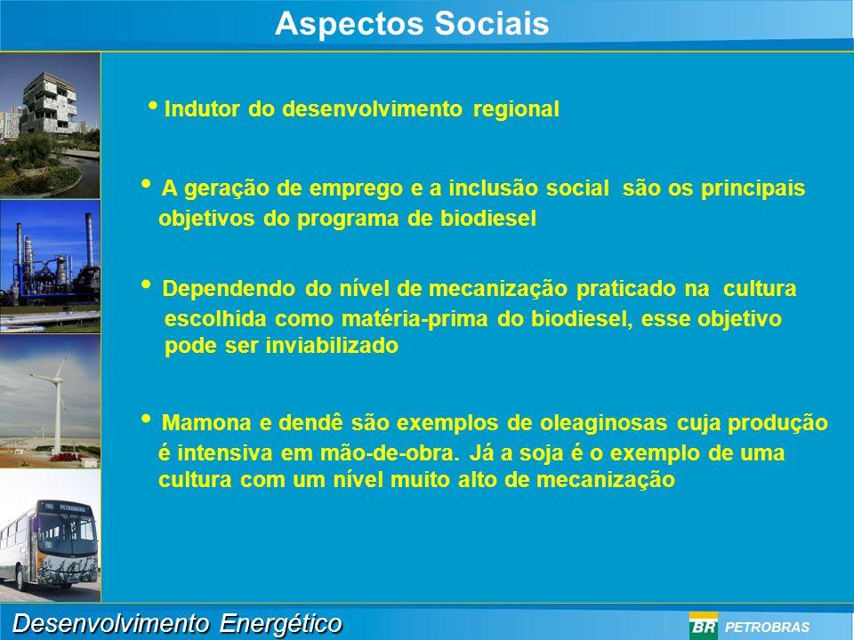 A geração de emprego e a inclusão social são os principais