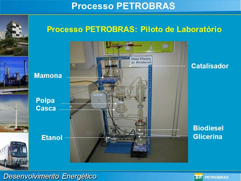 Processo PETROBRAS Processo PETROBRAS: Piloto de Laboratório
