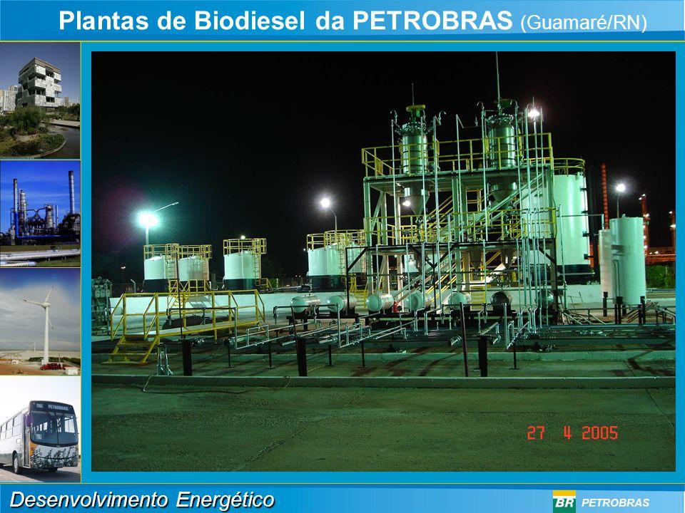 Plantas de Biodiesel da PETROBRAS (Guamaré/RN)