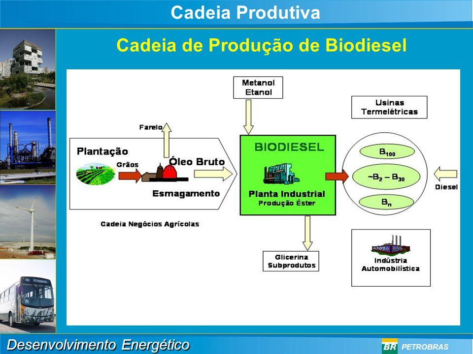 Cadeia Produtiva Cadeia de Produção de Biodiesel