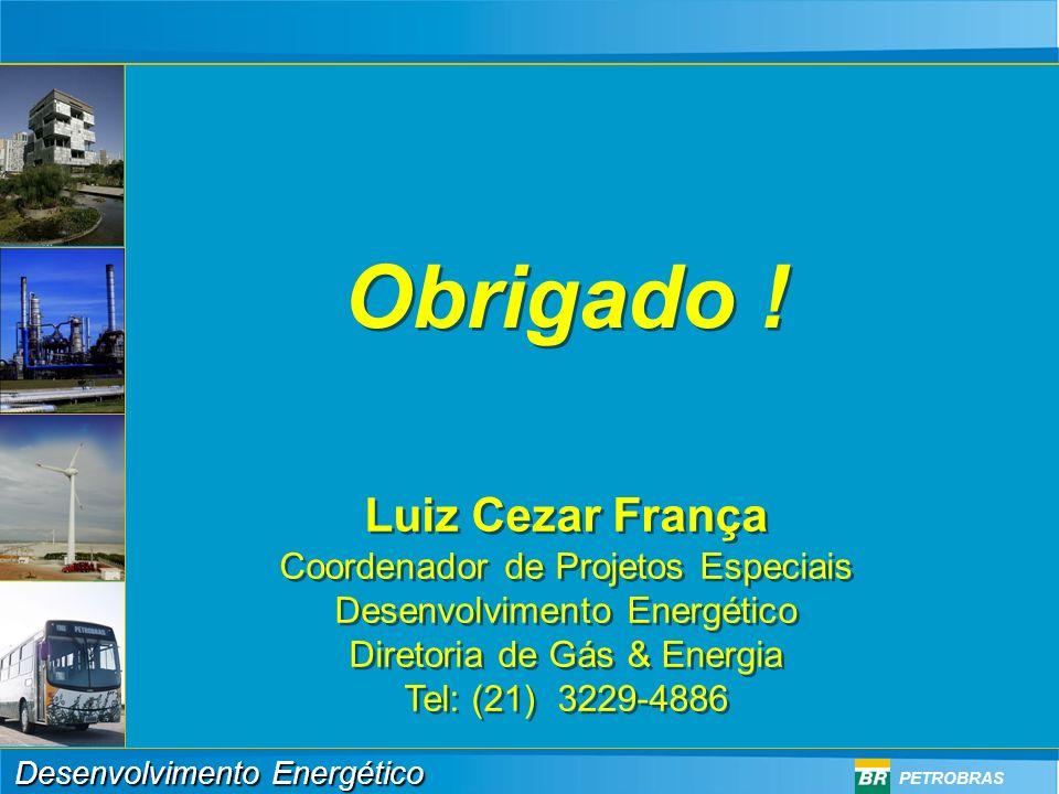 Obrigado ! Luiz Cezar França Coordenador de Projetos Especiais
