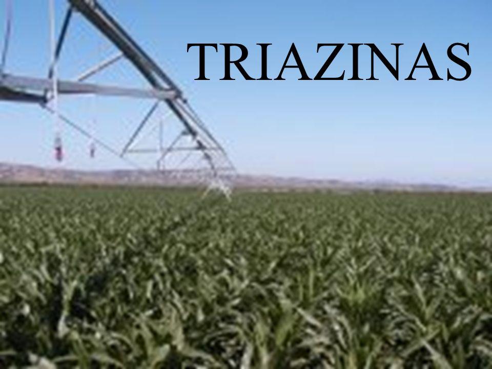 TRIAZINAS TRIAZINAS